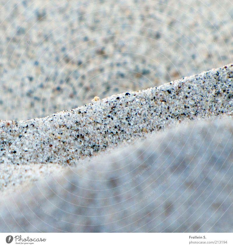 Körnchen für Körnchen Natur Urelemente Sand Sommer Schönes Wetter Strand Ostsee einfach nah natürlich grau ruhig Ferien & Urlaub & Reisen Gedeckte Farben
