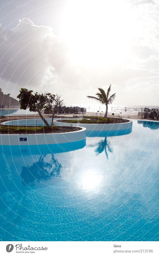 schön frisch Himmel Ferien & Urlaub & Reisen blau Wasser Sonne Meer Erholung Wolken Küste Freizeit & Hobby Tourismus Schwimmbad türkis Sommerurlaub Palme
