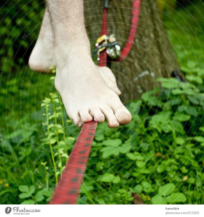 Balance Freizeit & Hobby Sommer Sport Mensch Junger Mann Jugendliche Fuß 1 stehen standhaft Seiltänzer Behaarung Zehen rot grün gespannt Barfuß Farbfoto