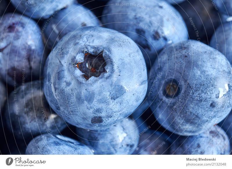 Close up Bild von reifen und frischen Blaubeeren. Frucht Ernährung Essen Diät Sommer Garten Natur Pflanze saftig blau Lebensmittel Beeren organisch Gesundheit