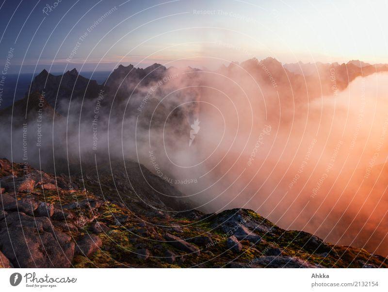 Vor Sonnenaufgang Landschaft Urelemente Wolken Nachthimmel Sonnenuntergang Klima Wetter Berge u. Gebirge Lofoten Gipfel leuchten ästhetisch exotisch fantastisch