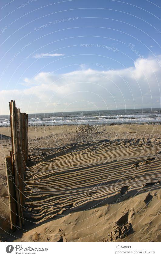 Die -3 Grad sieht man gar nicht Natur Wasser Himmel Meer Winter Strand Ferien & Urlaub & Reisen ruhig Wolken Einsamkeit Ferne Erholung Freiheit Sand Landschaft