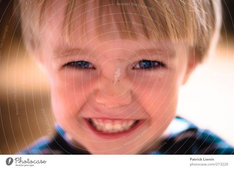 Stinker Mensch Kind schön blau Freude Gesicht Auge Junge Gefühle Glück lachen Haare & Frisuren Kopf Zufriedenheit Stimmung lustig
