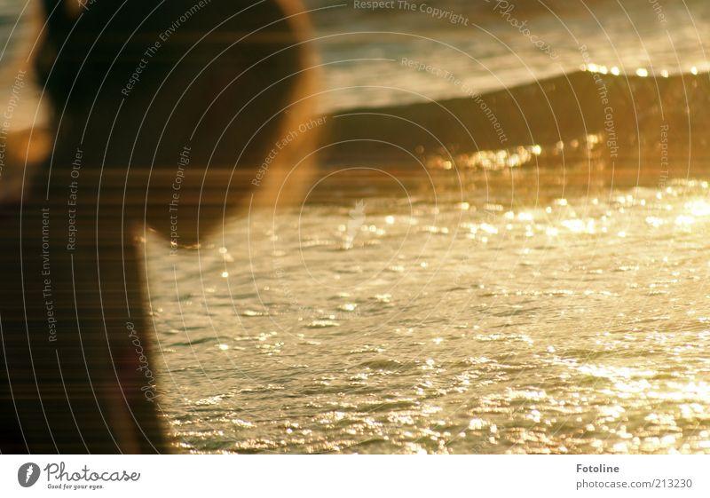 Sommertraum Mensch Kind Natur Wasser Mädchen Meer Strand schwarz gelb Kopf Wärme träumen Kindheit Wellen gold