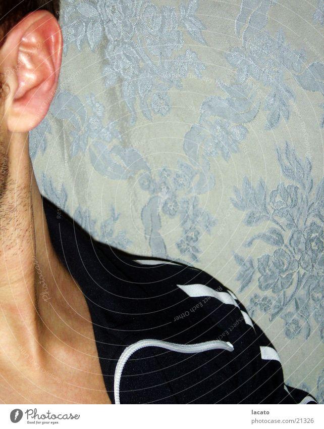 vorbeigeschaut Mann Blume blau Stil Haare & Frisuren Kopf Haut Hintergrundbild Ohr Streifen Tapete hören Jacke Bart Schulter Hals