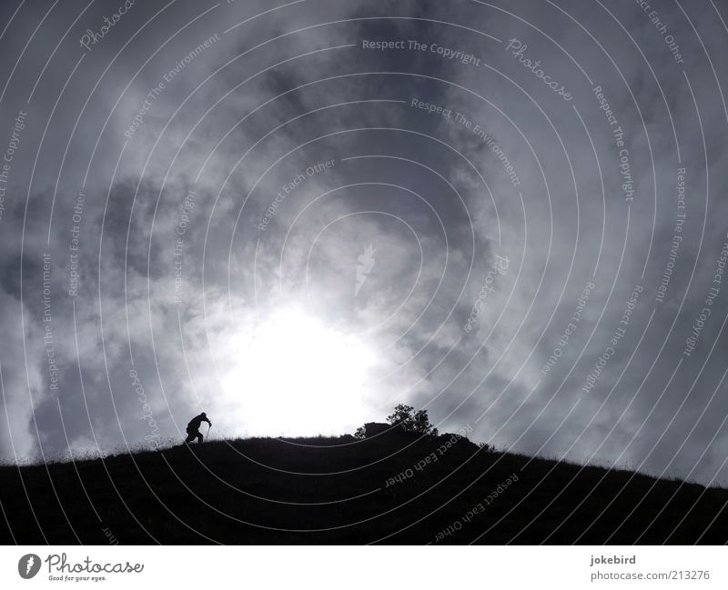 Weg zur Sonne Himmel Natur Wolken Einsamkeit Ferne Berge u. Gebirge oben grau Bewegung Wege & Pfade Luft laufen wandern Abenteuer hoch