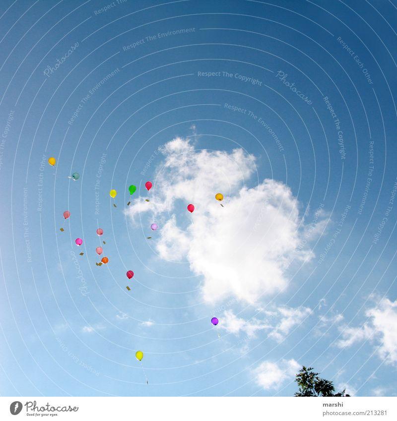 Träume & Wünsche Feste & Feiern blau mehrfarbig Luftballon Wolken Himmel Ferne träumen Wunsch Glückwünsche hoch fliegen fliegend Anlass Farbfoto Außenaufnahme
