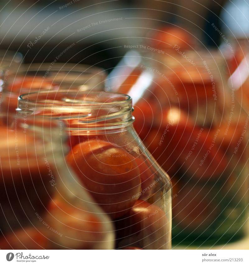 Tomaten im Glas grün rot Ernährung Lebensmittel Gemüse lecker genießen Vorrat Delikatesse selbstgemacht Behälter u. Gefäße konservieren Haltbarkeit konserviert