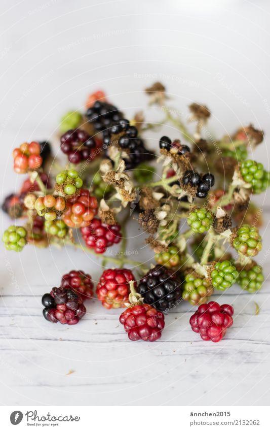 Brombeeren Natur Frucht rot grün reif Gesunde Ernährung Speise Essen Foodfotografie Innenaufnahme Detailaufnahme Nahaufnahme Gesundheit Lebensmittel ansammeln