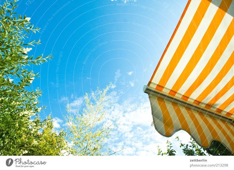 Hochzeit Garten heiß Juni Markise Blauer Himmel Streifen Sommer Wolken Farbfoto Außenaufnahme Menschenleer Textfreiraum oben Textfreiraum Mitte Morgen