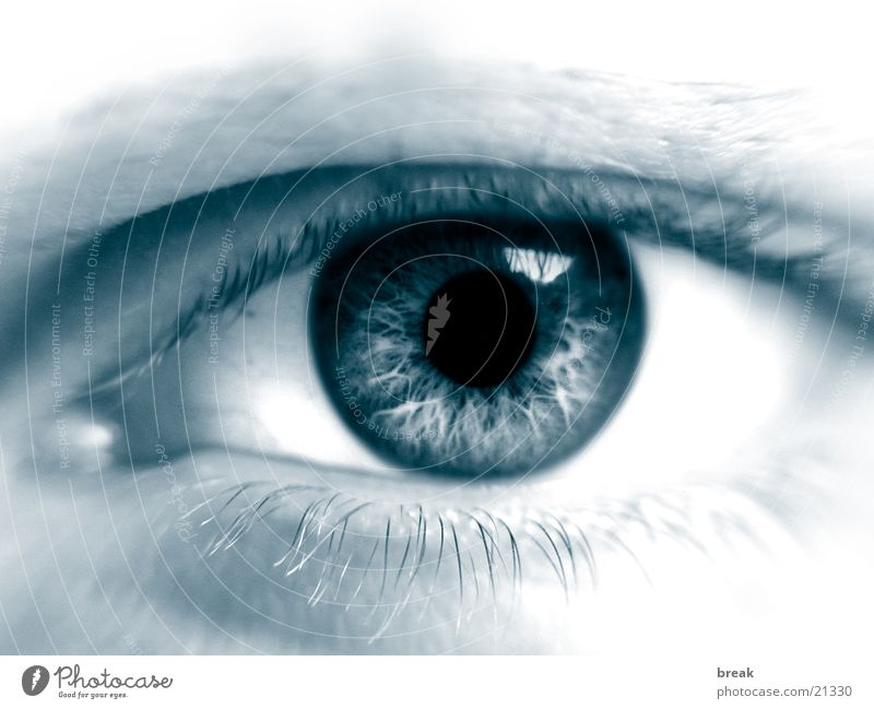 Augenblick_01 Mensch Gesicht Auge Makroaufnahme Regenbogenhaut