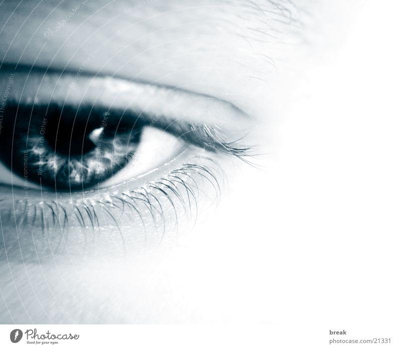 Augenblick_02 Mensch Makroaufnahme Gesicht Regenbogenhaut