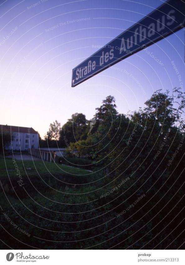 Viel zu tun Himmel Natur Baum Haus Straße Gras Garten träumen Horizont Beginn Wachstum planen Hoffnung Zukunft Idylle Dorf