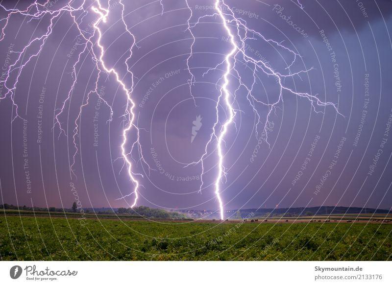 Unter Strom Gewitter Blitz und Donner Umwelt Natur Landschaft Pflanze Tier Urelemente Erde Feuer Luft Himmel Wolken Gewitterwolken Unwetter Blitze Wiese Feld