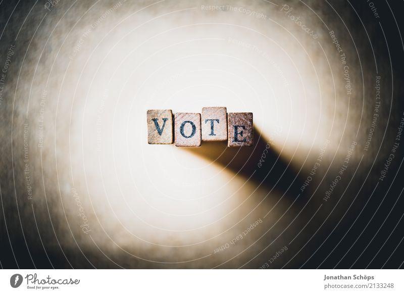 Vote Holz Schriftzeichen Typographie wählen Gesetze und Verordnungen Text Stempel Wahlen Entscheidung Entschlossenheit demokratisch Demokratie Parlament