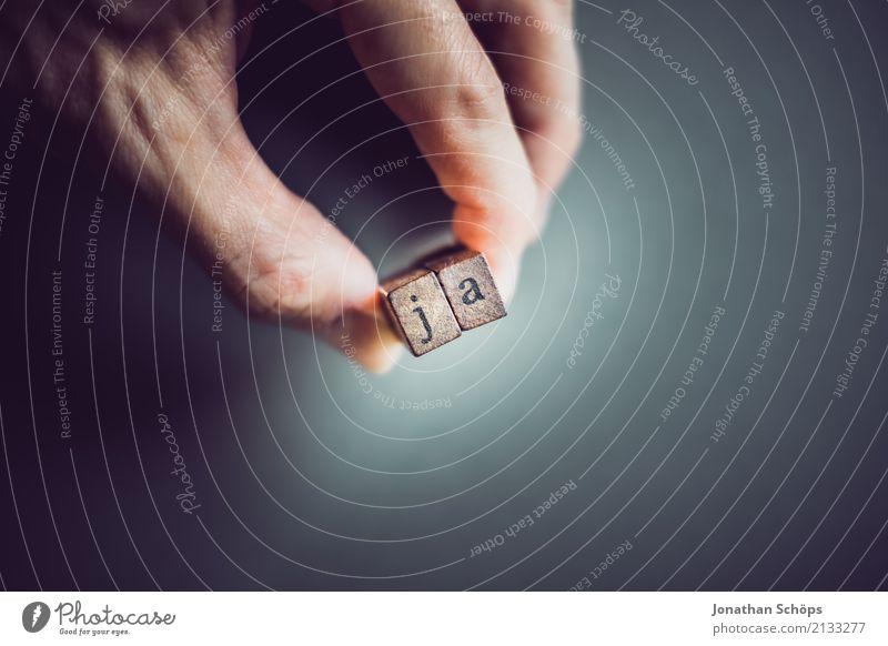 ja Hand Holz Schriftzeichen festhalten Typographie Gesetze und Verordnungen wählen Text Stempel Entscheidung Wahlen Entschlossenheit Regierung demokratisch