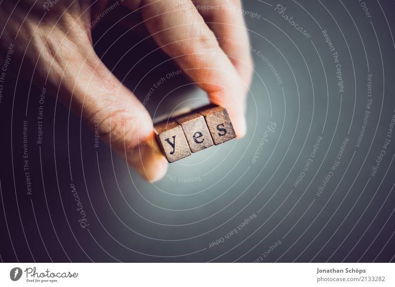yes Hand Holz Schriftzeichen festhalten Typographie Gesetze und Verordnungen wählen Text Englisch Stempel Entscheidung Wahlen Entschlossenheit Regierung