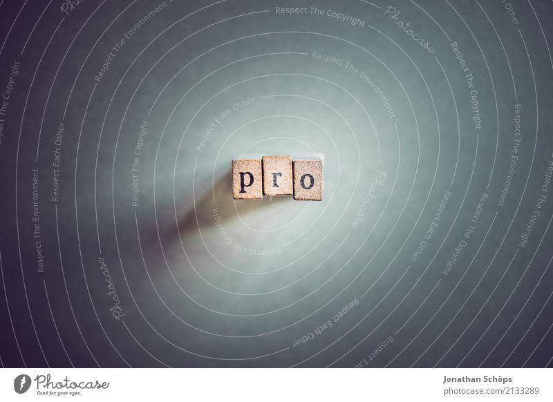 pro Holz Schriftzeichen Typographie wählen Gesetze und Verordnungen Text Stempel Entscheidung Wahlen Entschlossenheit demokratisch Parlament Regierung