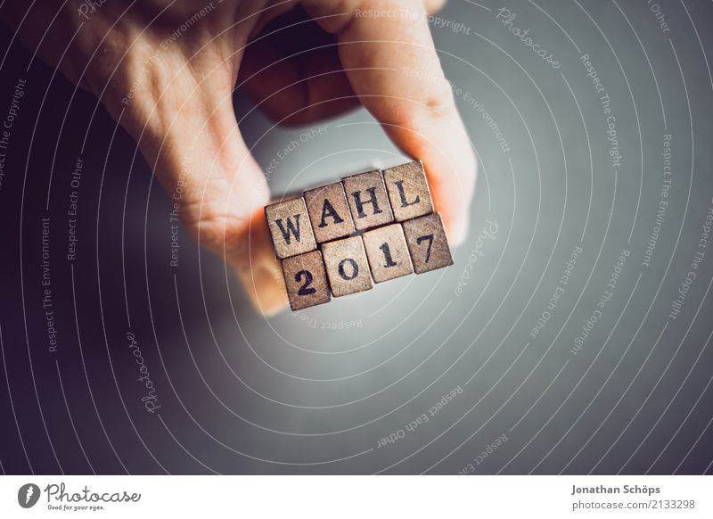 Wahl 2017 Holz Schriftzeichen Typographie Gesetze und Verordnungen Text wählen Stempel Entscheidung Wahlen Entschlossenheit Deutscher Bundestag Regierung