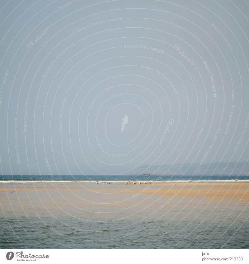 Sandbank Ferien & Urlaub & Reisen Ferne Freiheit Sommer Sommerurlaub Strand Meer Natur Landschaft Himmel Asien Indien Goa Unendlichkeit Farbfoto Außenaufnahme