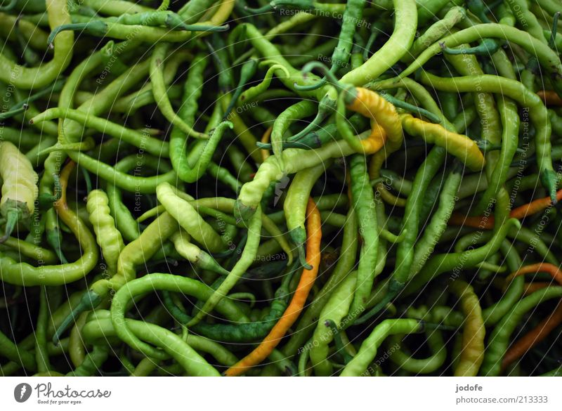 Peperoni Lebensmittel Gemüse Kräuter & Gewürze mehrfarbig grün Scharfer Geschmack Vegetarische Ernährung durcheinander viele Strukturen & Formen gekrümmt
