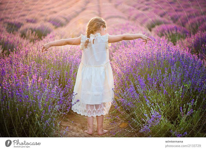 Diese Freiheit Kind Mädchen Haare & Frisuren 1 Mensch 3-8 Jahre Kindheit Umwelt Natur Erde Sonnenlicht Sommer Schönes Wetter Feld Kleid blond Glück schön