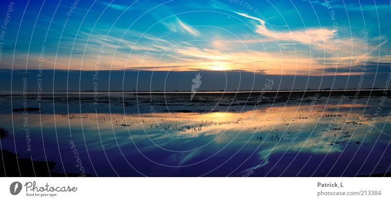 Horizont Landschaft Luft Wasser Himmel Wolken Nordsee Blick träumen ästhetisch Ferne Fröhlichkeit frisch blau Gefühle Neugier Sehnsucht einzigartig Erde