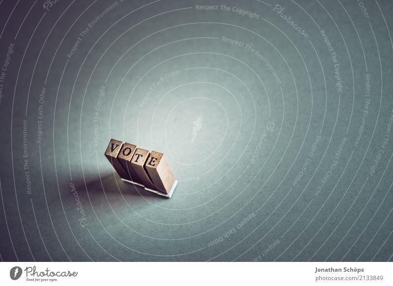 Vote Holz Schriftzeichen Typographie Gesetze und Verordnungen Text wählen Englisch Stempel Entscheidung Wahlen Entschlossenheit Regierung demokratisch Parlament