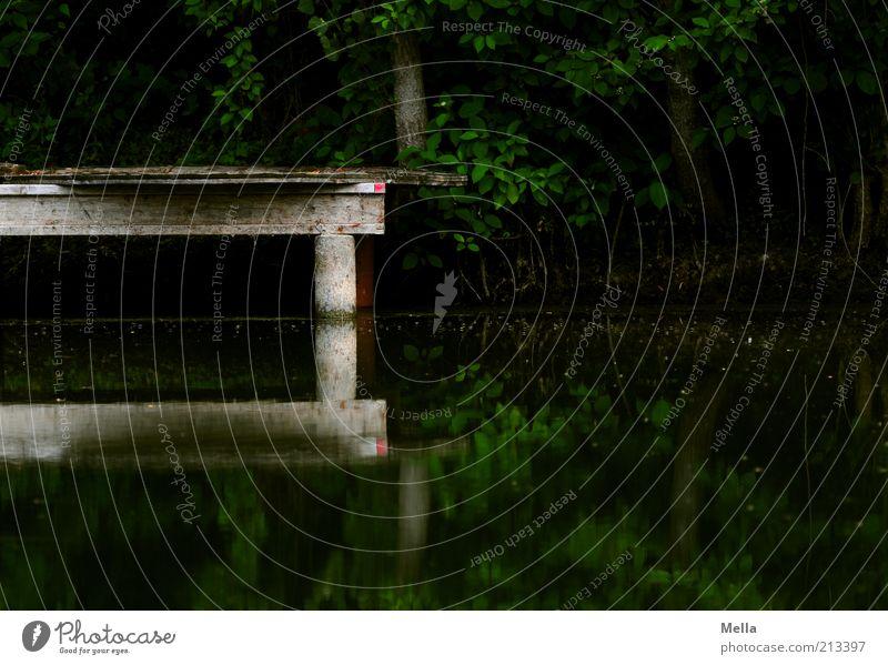 Dunkel Umwelt Natur Landschaft Wasser Seeufer Teich Steg Holz dunkel eckig Stimmung geheimnisvoll ruhig Bildausschnitt Wasserspiegelung Wasseroberfläche