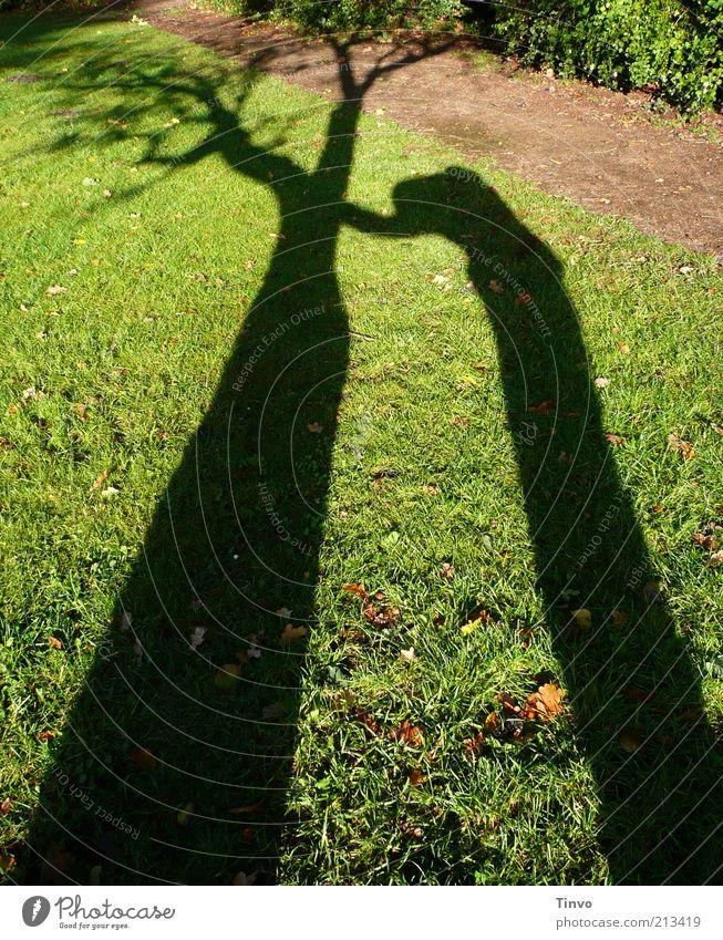 Schatten von Mensch, der sich an einem Baum abstützt Frau Natur grün ruhig Einsamkeit schwarz Wiese dunkel Wege & Pfade Traurigkeit braun Trauer Vergänglichkeit