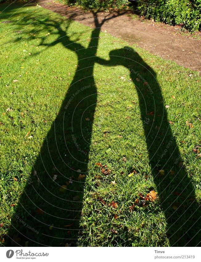 Schatten von Mensch, der sich an einem Baum abstützt Natur Wiese dunkel braun grün schwarz Endzeitstimmung Trauer Traurigkeit Vergänglichkeit Verzweiflung