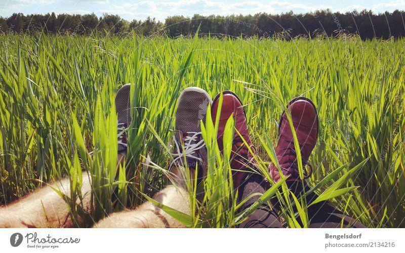 Pause im Feld Mensch Himmel Natur Sommer Sonne rot Erholung ruhig Leben Beine Wiese feminin Gras Fuß Zusammensein Freizeit & Hobby
