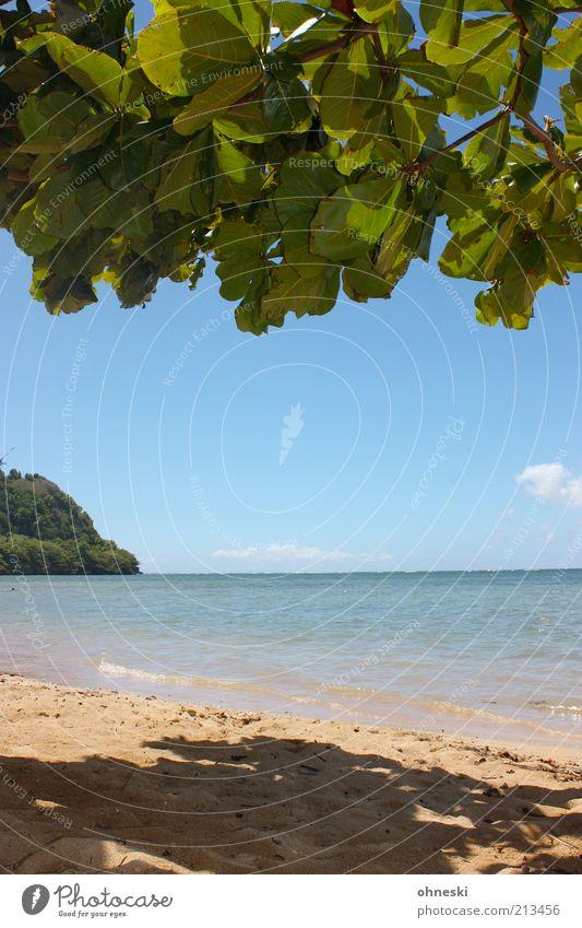 Schattiges Plätzchen II Natur Wasser Himmel Baum Meer Sommer Strand Ferien & Urlaub & Reisen Blatt Erholung Freiheit Landschaft Luft Zufriedenheit Küste Insel