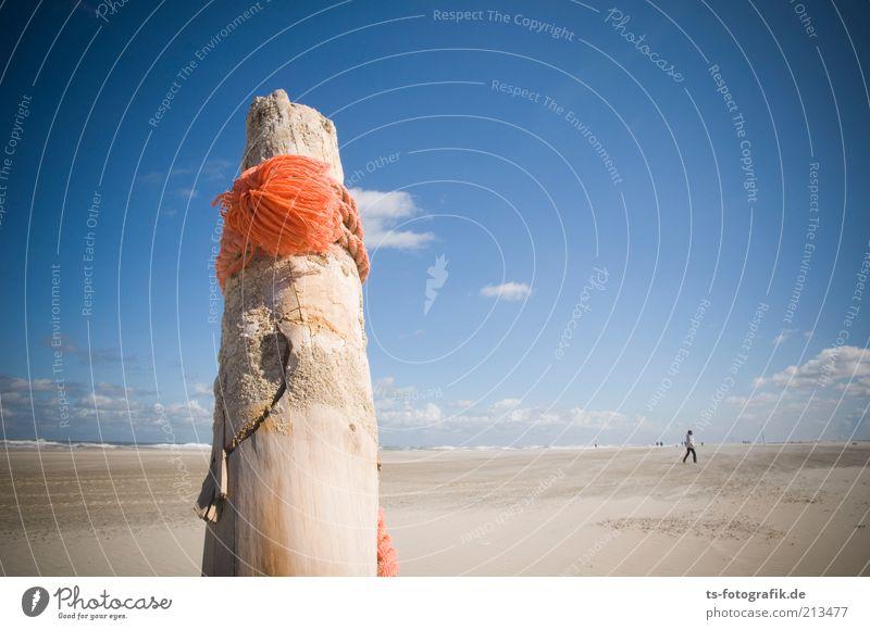 Hollandtag auf Norderney I Wasser schön Himmel weiß Sonne Meer blau Sommer Strand Ferien & Urlaub & Reisen Wolken Ferne Freiheit Holz Sand Linie