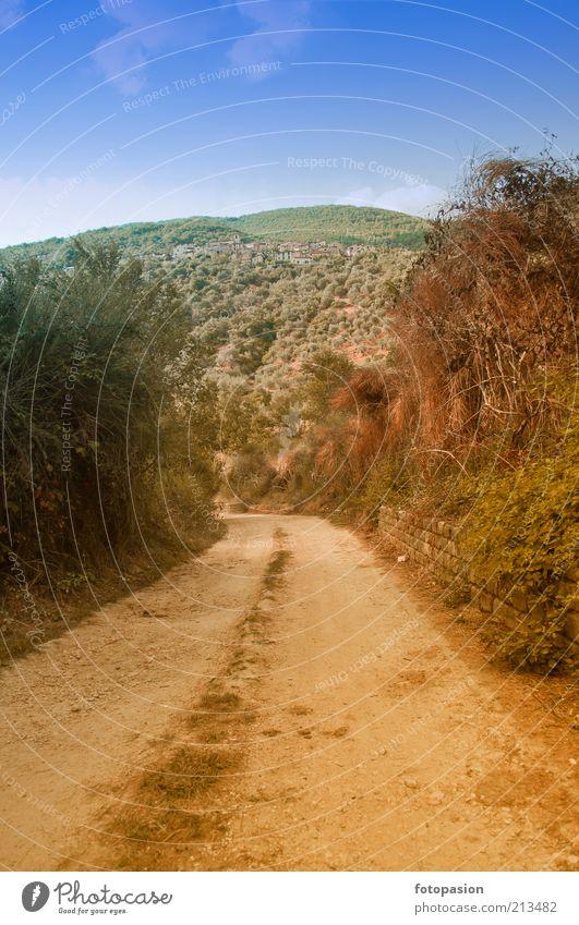 die alte Straße aus einem Dorf aus der Ferne. Leben harmonisch Erholung Ferien & Urlaub & Reisen Tourismus Tapete Natur Landschaft Pflanze Himmel