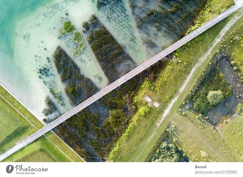 Brücke über einen See mit Uferbewuchs aus der Luft Design Umwelt Natur Landschaft Pflanze Wasser Gras Sträucher Grünpflanze Park Wellen Küste Seeufer Strand