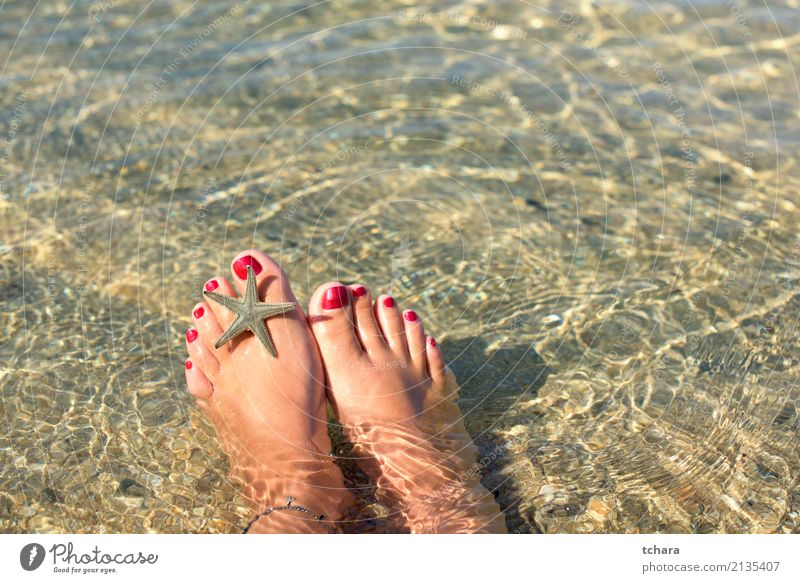 Am Strand exotisch schön Nagellack Erholung Ferien & Urlaub & Reisen Sommer Meer Dekoration & Verzierung Tapete Frau Erwachsene Natur Sand natürlich blau Farbe