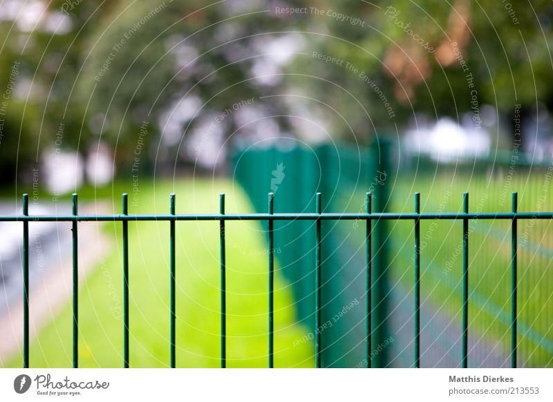 Zaun Natur Baum grün Wiese Barriere Eisen Gitter massiv Fluchtpunkt Zaunpfahl