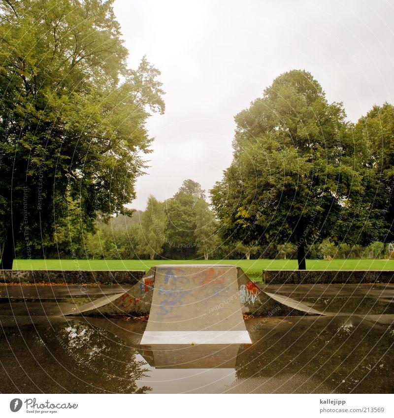 frontside-air Himmel Natur Wasser grün Baum Sommer Wiese Umwelt Landschaft Park Regen Freizeit & Hobby Lifestyle Skateboarding aufwärts Grünpflanze