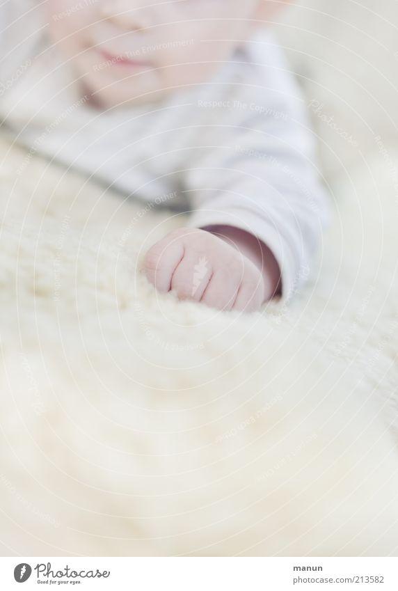 Fäustling Baby Kindheit Arme Hand Finger 0-12 Monate liegen authentisch hell klein natürlich niedlich Wärme weich Fröhlichkeit Zufriedenheit Gefühle Leben