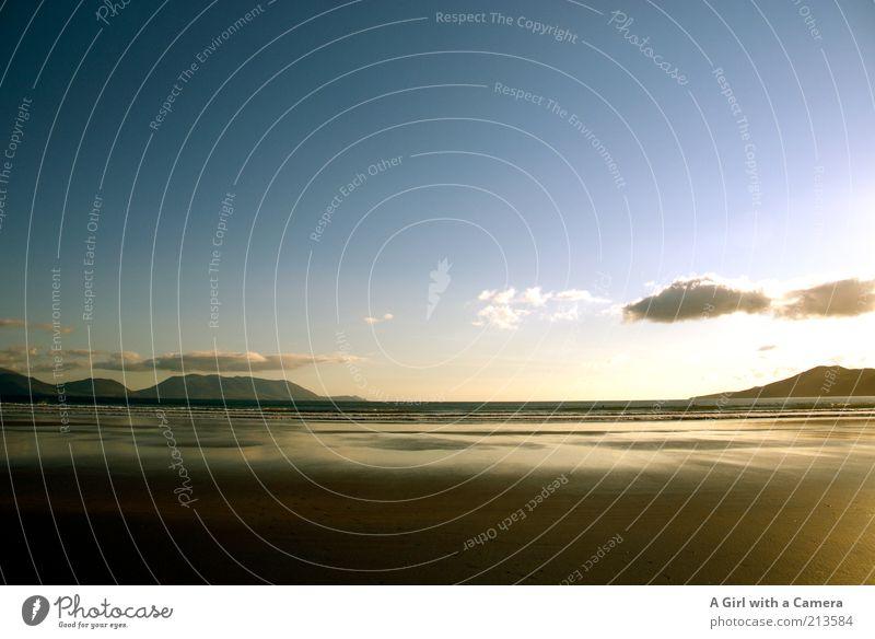 Golden Inch Natur Wasser Himmel Meer Sommer Strand Ferne Erholung Freiheit Sand Landschaft Luft glänzend gold Coolness außergewöhnlich