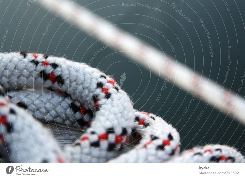 vertörnt Seil Wasser ästhetisch fest Sicherheit ruhig maritim Schiffstau Freizeit & Hobby Strukturen & Formen An Bord Unschärfe vertäuen liegen Tag Farbfoto