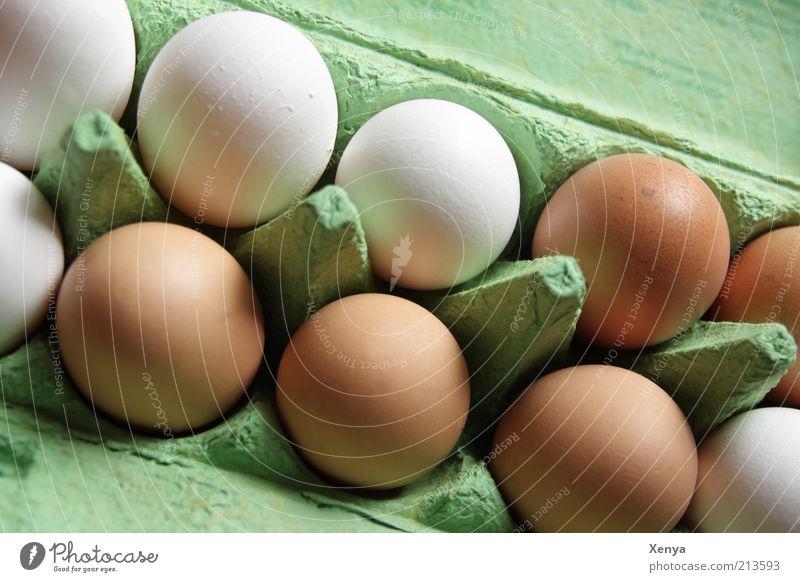 Ei, Ei, Ei Lebensmittel braun grün weiß Eierkarton Einzelhandel sortieren mehrere viele Menschenleer nebeneinander Eierschale bioeier Tag Farbfoto