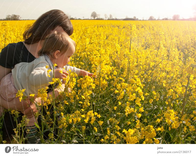 Rapsvergnügen Kind Natur Ferien & Urlaub & Reisen Jugendliche Junge Frau Sommer Freude Erwachsene Blüte Frühling Liebe Zusammensein Feld Wachstum lernen