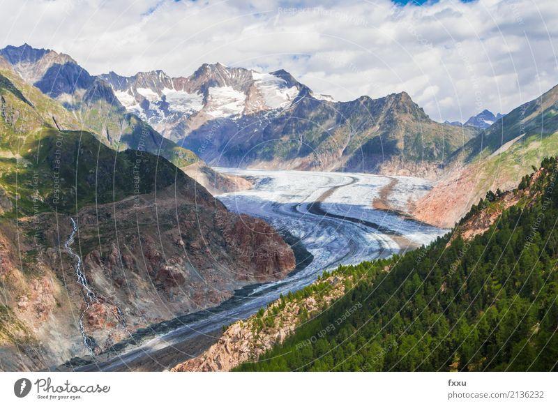 Grosser Aletschgletscher Gletscher wandern Schweiz groß eisgigant Klima Klimawandel Kanton Wallis Berge u. Gebirge Alpen Hochgebirge riederalp