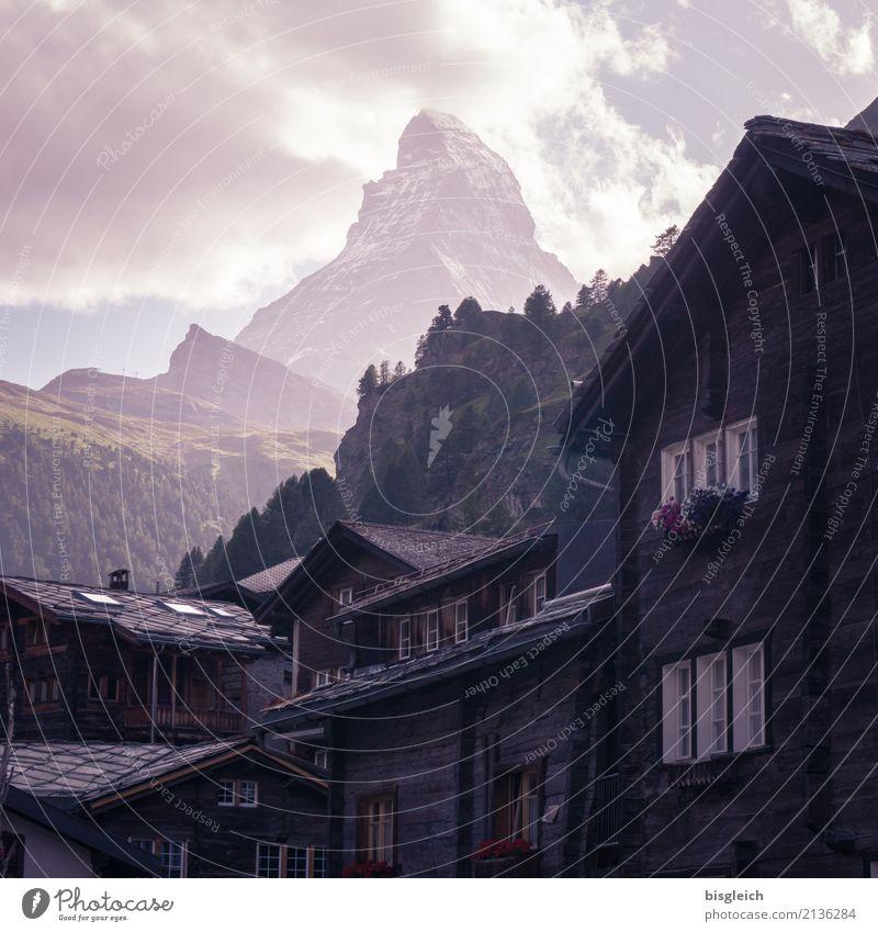 Matterhorn I Bergsteigen Klettern Alpen Berge u. Gebirge Gipfel Zermatt Schweiz Europa Dorf braun grün selbstbewußt Erfolg Mut Tatkraft Farbfoto Gedeckte Farben