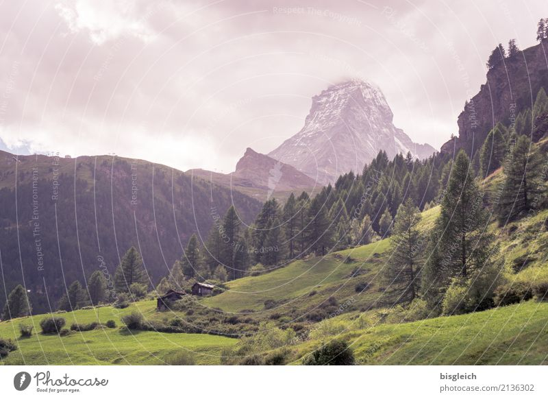 Matterhorn III grün Landschaft Berge u. Gebirge wandern Gipfel Alpen Klettern Bergsteigen