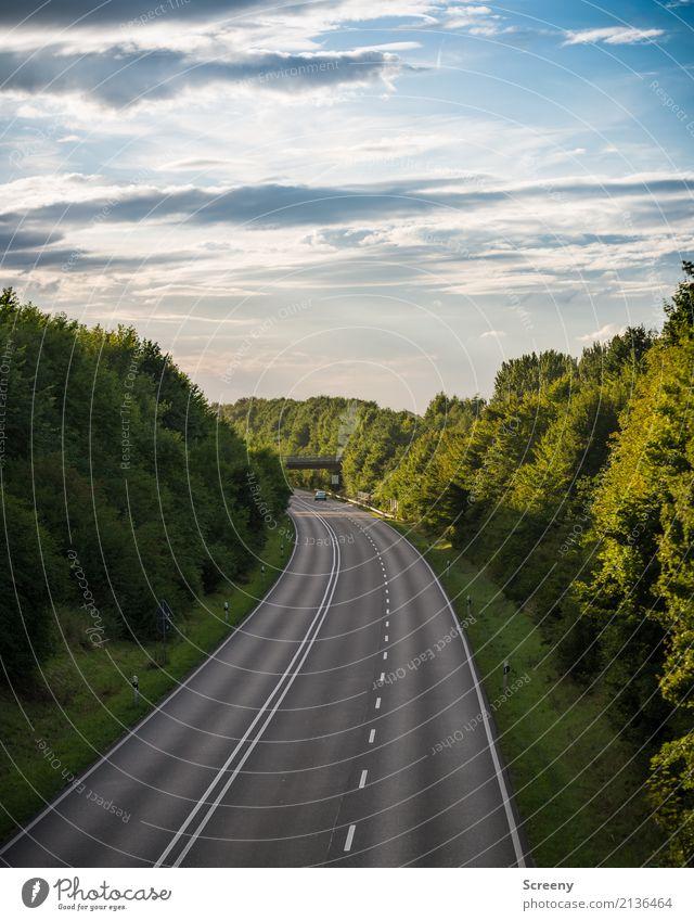 Ruhender Verkehr Himmel Pflanze blau Sommer Baum Landschaft Wolken Ferne Straße Wege & Pfade Gras Freiheit Tourismus grau Ausflug Sträucher
