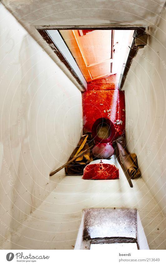 rOter teppich / rEd carpet Lifestyle Häusliches Leben Wohnung Toilette WCsitz dreckig rot Stimmung ruhig bizarr einzigartig skurril Surrealismus Fototechnik