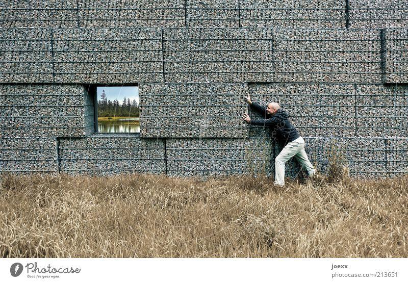 Stück für Stück Mann Natur Arbeit & Erwerbstätigkeit Fenster Mauer See Landschaft Erwachsene maskulin Idylle dumm Surrealismus Mensch Zerstörung Umweltschutz